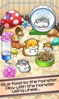 Hamster Life1
