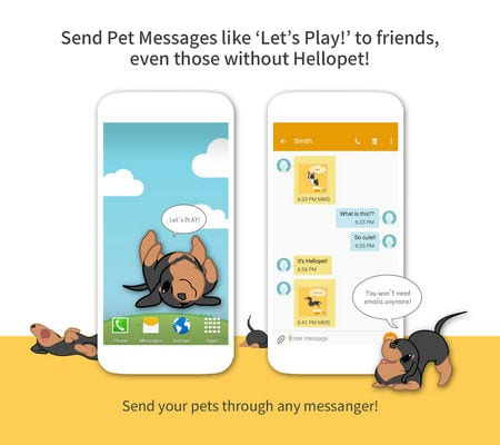 Hellopet - Cute cats, dogs and other unique pets1