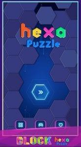 Hexa Puzzle1