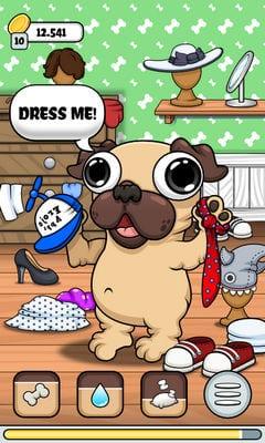 Pug - My Virtual Pet Dog1