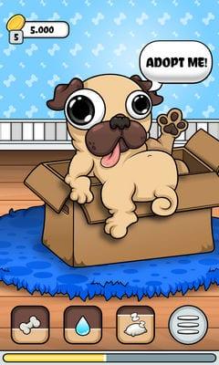 Pug - My Virtual Pet Dog2