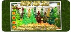 Weed Shop2