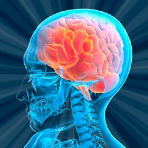 brain quiz: memory, mind games