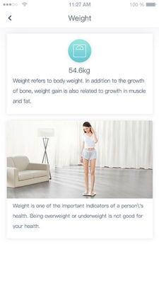 Huawei Body Fat Scale2
