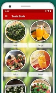 Detox Diet Recipes: Healthy Antiviral & Toxin Free