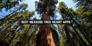 Best Measure Tree Height Apps