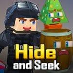Hide and Seek by Blockman GO Studio