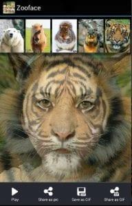 zooface 2