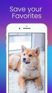 InSaver for Instagram by Euroz Software Company Inc.1