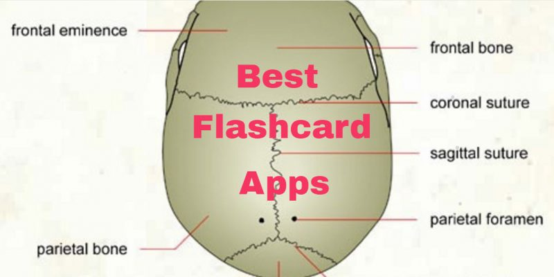 6 Best Flashcard Apps