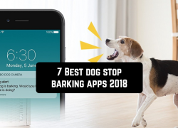 7 Best dog stop barking apps 2018