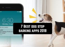 7 Best dog stop barking apps (updated 2019)