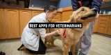 11 Best apps for veterinarians (Android & iOS)