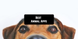 11 Best Animal Apps for Android & iOS